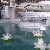 flamant blanc et nenuphar,parc aquatique poisson en mousse