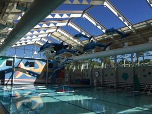 orques et dauphins en mousse,aires de jeux aquatiques,sculptures ctoon, jeux aquatiques