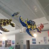 tortue parc aquatique poisson en mousse